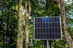Panneau solaire ensoleillé dans la forêt Images stock