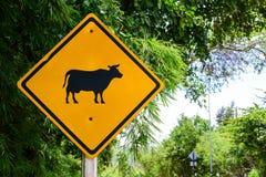 Panneaux d'avertissement de vache à animaux image stock