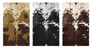 3 panneaux de peau de peau de vache à nguni d'Africain Photo stock