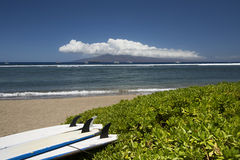 Panneaux de ressac se trouvant sur la plage Lahaina, Maui, Hawaï Photos stock