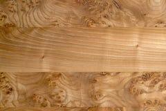Panneaux en bois collés de grain variable pour des milieux Photographie stock