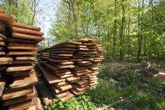 Panneaux en bois de printemps Photo libre de droits