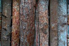 Panneaux non traités en bois de pin Photo stock
