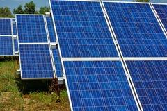 Panneaux solaires bleus sur Sunny Day Photo libre de droits