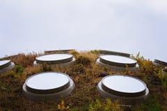 Panneaux solaires de toit sur le jardin de dessus de toit Photographie stock libre de droits