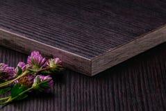 Pannelli di particelle laminati buio con i fiori del trifoglio Fotografie Stock