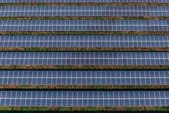 Pannelli solari, aziende agricole solari fotografia stock libera da diritti