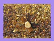 Pannello con ambra intarsiata Fotografia Stock Libera da Diritti