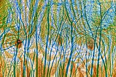 Pannello di legno di pino con gli alberi Fotografia Stock Libera da Diritti
