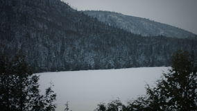 Panning Footage of Frozen Nature, Lake and Forest stock video