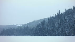 Panning Footage of Frozen Nature, Lake and Forest stock video footage