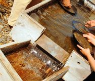 Panning for gold. Gold miners sifting panning for gold Royalty Free Stock Images