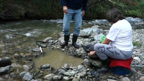 Panning for gold at spruce creek stock video