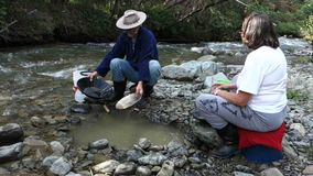 Panning for gold at spruce creek stock video footage