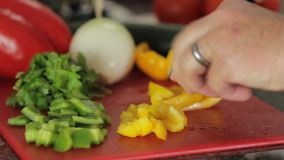 Panning motion and close up of someone cutting vegetables