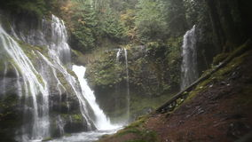Panning Movie of Panther Creek Waterfalls in Wind River Valley Skamania County Washington with Gushing Water Audio Sound 1080p stock video