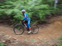 Panning photography of man cyclin during a Mountain Bike race Royalty Free Stock Photo