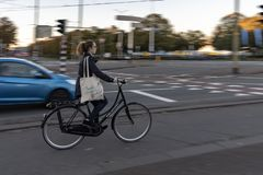 Dutch cyclist in the morning royalty free stock photos