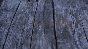 Panning przez starą drewnianą krakingową podłoga zdjęcie wideo