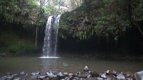 Pan of twin falls on Maui. Panning shot of twin falls on the Hawaiian Island of Maui stock video