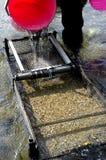 Panning van de prospector voor goud in rivier Royalty-vrije Stock Foto's