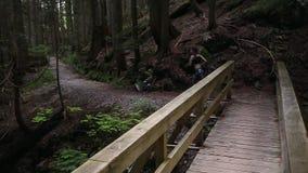 Panning van een jonge Kaukasische vrouw in sportkledingsjogging door altijdgroen bos over een houten brug wordt geschoten die stock footage