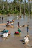 Panning voor Saffieren in de rivier royalty-vrije stock afbeeldingen