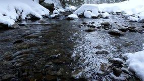 Panning w dół na halnej rzece zbiory wideo