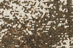 Panno ricamato con gli zecchini dell'oro Immagini Stock Libere da Diritti