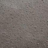 Panno scuro del feltro del numdah Immagini Stock