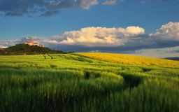 Pannonhalma Abbey with wheat and rapeseed field, Hungary Royalty Free Stock Photo