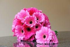Panny młode Różowią Kwiaty Fotografia Stock