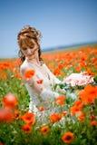 panny młodej śródpolny kwiatów target1683_1_ Fotografia Royalty Free