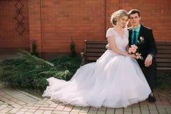 panny młodej fornala całowania park para nowożeńcy państwo młodzi przy ślubem w natury zieleni lesie całuje fotografia portret Zdjęcia Stock