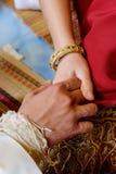 Panny młodej & fornala mienia ręka Zdjęcie Royalty Free