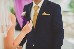 Panny młodej mienia pierścionek podczas ślubnej ceremonii i fornal, dalej Zdjęcie Stock
