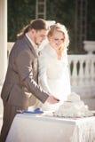 panny młodej tortowy rżnięty fornala ślub Zdjęcie Royalty Free