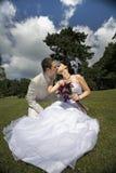 panny młodej fornala kising park fotografia royalty free