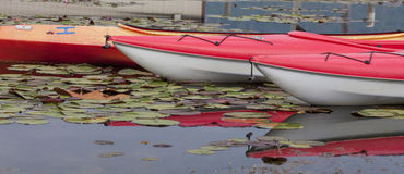 Pano of kayaks anchored on calm water. Stock Images