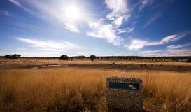 Pano Landschaft des Bewässerungsloches in Kgalagadi Lizenzfreie Stockfotos