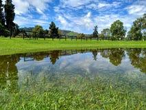 Panorámico de paisaje colombiano del parque en día soleado Imágenes de archivo libres de regalías