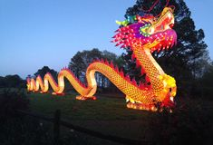 Panorâmico ilumine acima o dragão Fotografia de Stock Royalty Free