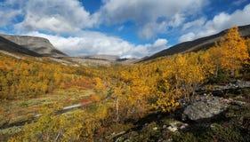 Panoram för Poachyok bäckdal Arkivfoto