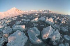 Panorama ártico da geleira, fjord congelado (Spitsbergen) Imagens de Stock