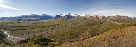 Panorama énorme de l'Alaska de parc de Denali avec la montagne de Mc Kinley Photos stock
