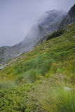 Panorama étonnant de montagne de Rila avec le brouillard près des sept lacs Rila Photographie stock libre de droits