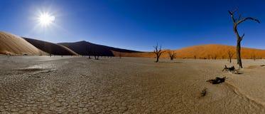 Panorama- ökenliggande Arkivfoton