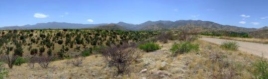 Panorama över desertland Tucson, Arizona fotografering för bildbyråer