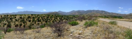 Panorama über desertland Tucson, Arizona stockbild
