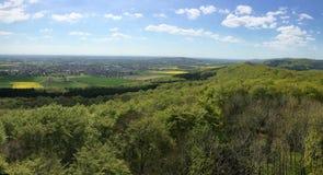 Panorama über Waldland mit Rapssamenfeld stockfotos